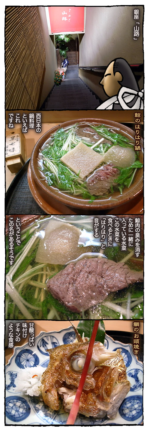4yamaji1.jpg