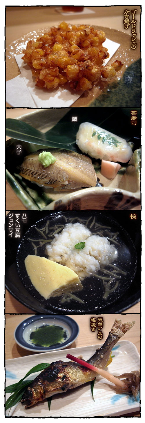 higuchi2.jpg