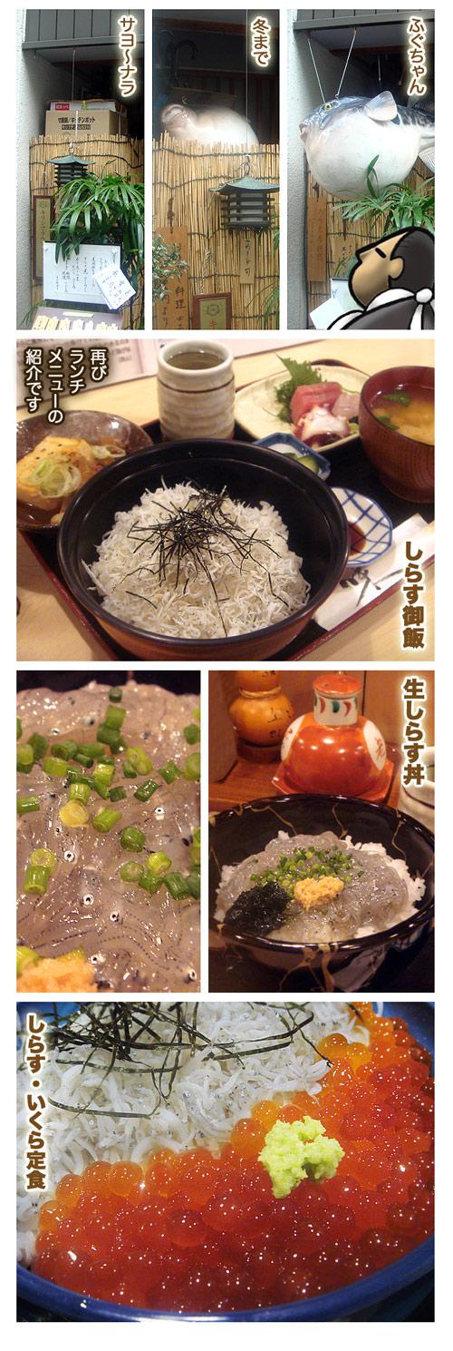 senfuji3.jpg