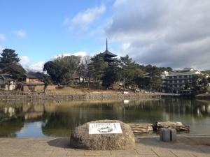 sarusawa0107_convert_20120107105508.jpg