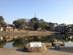 sarusawa0109_convert_20120109104314.jpg