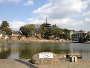 sarusawa0111_convert_20120111132425.jpg