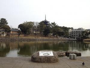sarusawa0115_convert_20120115110642.jpg