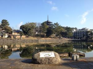 sarusawa0117_convert_20120117114358.jpg