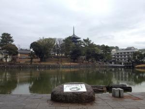sarusawa0121_convert_20120121104440.jpg