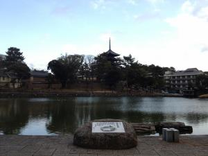 sarusawa0123_convert_20120123105047.jpg