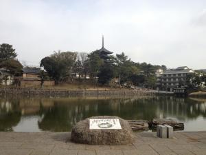 sarusawa0124_convert_20120124104640.jpg
