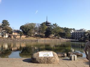 sarusawa0125_convert_20120125110824.jpg