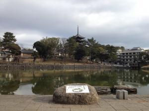 sarusawa0129_convert_20120129105612.jpg