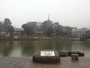 sarusawa0201_convert_20120201105923.jpg