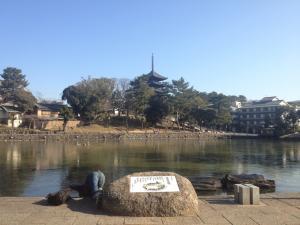 sarusawa0203_convert_20120203103105.jpg
