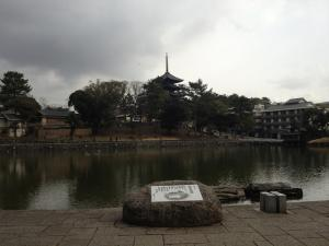 sarusawa0208_convert_20120208105401.jpg