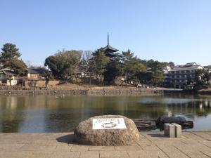 sarusawa0210_convert_20120210110906.jpg