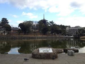 sarusawa0212_convert_20120212103933.jpg