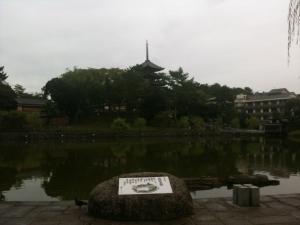 sarusawa0926_convert_20110926111252.jpg