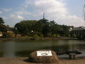 sarusawa1016_convert_20111016103226.jpg