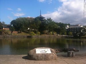 sarusawa1026_convert_20111026105144.jpg