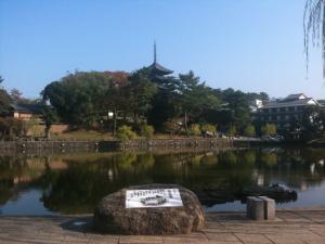 sarusawa1104_convert_20111104103759.jpg