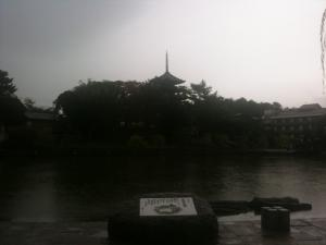 sarusawa1111_convert_20111111112307.jpg