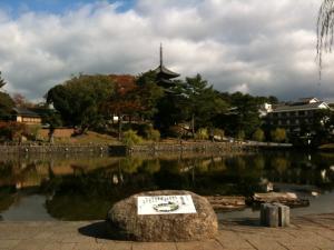 sarusawa1116_convert_20111116114103.jpg