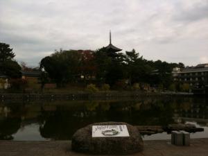 sarusawa1123_convert_20111123113731.jpg