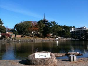 sarusawa1126_convert_20111126104347.jpg