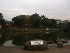sarusawa1129_convert_20111129110610.jpg