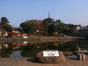 sarusawa1130_convert_20111130105639.jpg