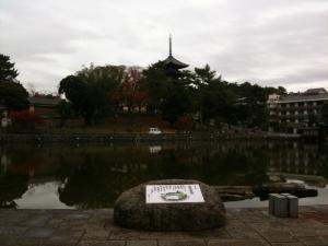 sarusawa1202_convert_20111202110518.jpg