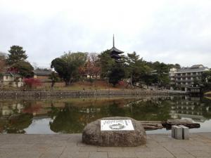 sarusawa1206_convert_20111206111659.jpg