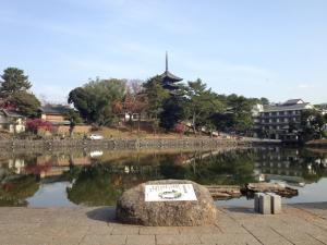 sarusawa1207_convert_20111207114607.jpg