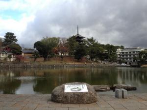 sarusawa1209_convert_20111209110638.jpg
