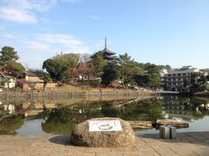 sarusawa1212_convert_20111212105930.jpg