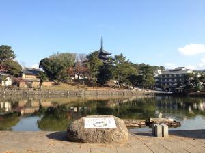 sarusawa1213_convert_20111213111604.jpg