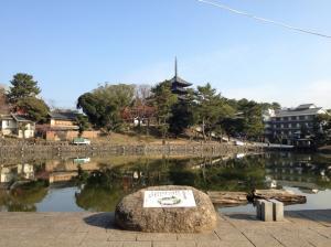 sarusawa1214_convert_20111214111710.jpg