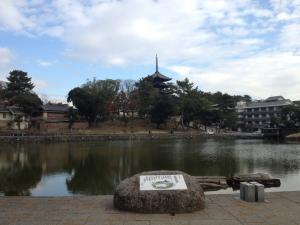 sarusawa1219_convert_20111219105456.jpg
