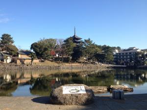 sarusawa1224_convert_20111224110824.jpg