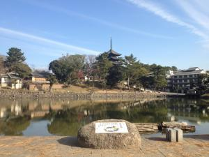 sarusawa1228_convert_20111228111100.jpg