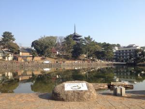 sarusawa1229_convert_20111229110859.jpg