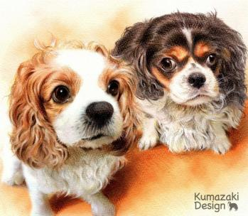 ペット肖像画 ペットの絵 ペット画 似顔絵 イラスト 犬 いぬ 小犬 子犬 キャバリア トイプードル 色えんぴつ画 色鉛筆画