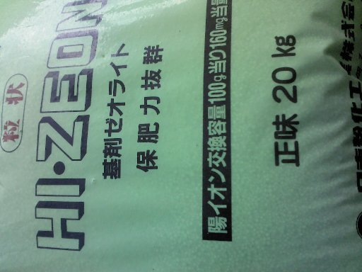 250210zeoraito.jpg