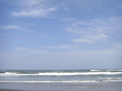 縮小白子の海