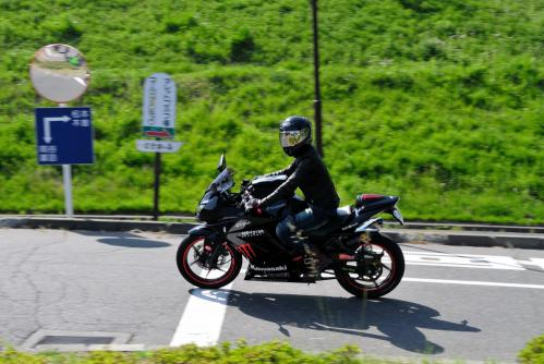DSC_2011_01.jpg