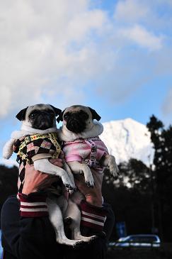 富士山と。。。 2