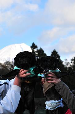 富士山と。。。 3
