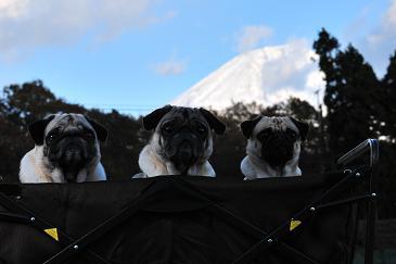 富士山と。。。 5