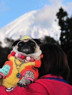富士山と。。。 7