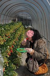 イチゴうまし♪