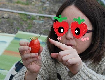 美味しいイチゴとは・・・
