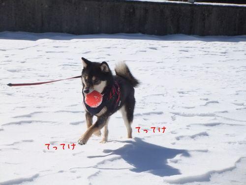 120227-2